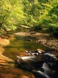 River Gelt, Cumbria, England Royalty Free Stock Photos