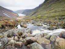 River in Glendalough, Wicklow, Ireland Stock Photography
