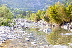 The river going down with the trees Stock Image