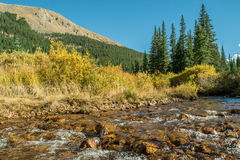 River of Gold Royalty Free Stock Images