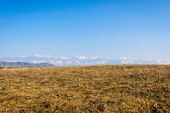 River, golden fields and snowy mountains, Azerbaijan Royalty Free Stock Photos