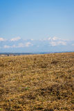 River, golden fields and snowy mountains, Azerbaijan Royalty Free Stock Photography