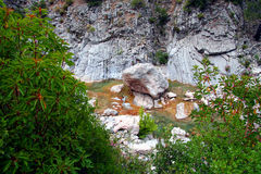 The river Gorgaja in Turkey. The stone lays in water Stock Photo