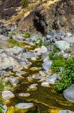 River in the gorge of Las Angustias, La Palma Stock Photos