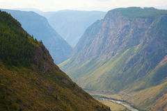 River gorge in the mountains Chulyshman Stock Image