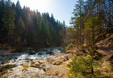 River gorge stock photo