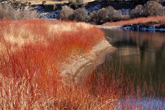 River with gorgeous fall colors Royalty Free Stock Photos