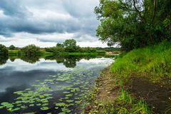 River, grass and clouds. Boggy river with grass, bushes, trees and clouds. Snov river, Chernihiv, Ukraine Royalty Free Stock Photography