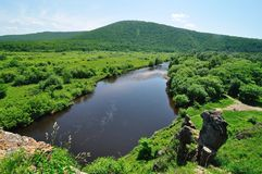 River in grassland. And forest Royalty Free Stock Photos