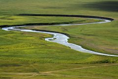 River on the grassland Stock Photography