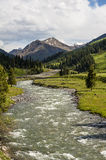 The river in the grassland Royalty Free Stock Images