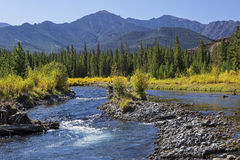 River gravel bar and mountains Stock Images