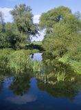 River great ouse Royalty Free Stock Images