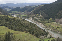 River between green hills. Beautiful river between green hills, North Island of New Zealand Royalty Free Stock Photo