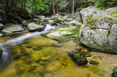 River. Green stones river on detail Royalty Free Stock Photo
