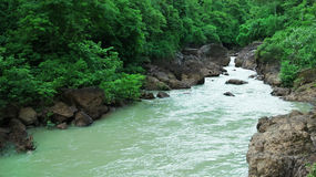 River with green trees Royalty Free Stock Photography