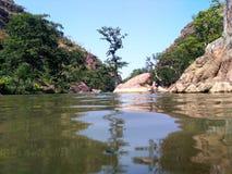 Nature royalty free stock photo