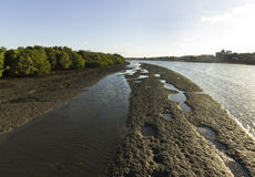 The river in Guamare, RN, Brazil stock photography