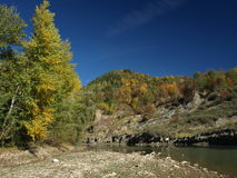 River habitat. Buzau river in autumn is a habitat for otter full of sedimentary rocks in the riverbed Stock Photography