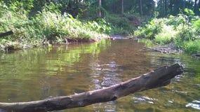 river hakwatunawa Stock Photography