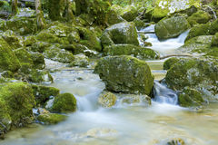 River in the Herisson Waterfalls Stock Photography
