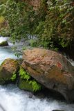 River Hermon stream in northern Israel Stock Photo