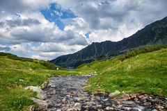 River high in mountains with shores covered with green grass in Royalty Free Stock Photos