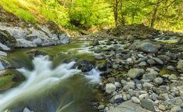 River in Hirkan national park in Lankaran Azerbaijan Stock Image