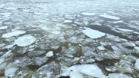 River ice flow in winter or spring, snow falling down, aerial view. Cracked ice floating on the river in spring time. Global warming stock footage