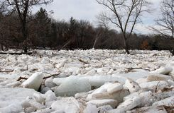 River Ice Jam and Flooding. Ice jam causing flooding on a Northern river royalty free stock photography