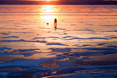 River ice at sunset. The lonely figure of a man walking on the frozen river at sunset, the reflection of the sun created the effect of fire of the desert Royalty Free Stock Photos