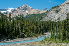 River on the icefield parkway in Jasper National Park Stock Photos