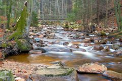 The river Ilse in the Harz National Park Stock Photography