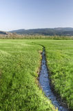 River In Grass Field Royalty Free Stock Images