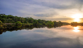 River In The Amazon Rainforest At Dusk, Peru, South America Stock Image