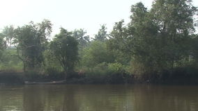 River india stock video footage