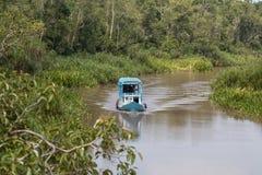 River Indonesia. Boatstrip Kalimantan, Sekonyer River Indonesia Stock Photos