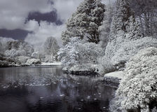 River in infrared. Lake / river photographed in near infrared light Stock Photo
