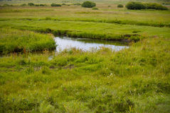 A river in Inner Mongolia grassland. A river in Inner Mongolia on grassland Royalty Free Stock Images