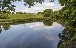 River Irwell above weir at Burrs Country Park near Bury. Lancashire, England, UK with ducks on calm waters and idyllic countryside beyond royalty free stock image