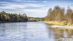 River isar autumn Stock Photos