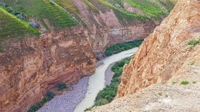 River. Israel desert water stone Royalty Free Stock Photography