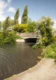 The River Itchen, Winchester Royalty Free Stock Image