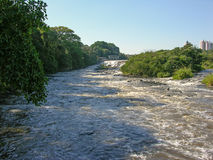 River and its small rapids. Large river cutting through town were the rapids take place in the shade of tropical trees Stock Photo