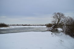 River. January month Western Ukraine river Styr Royalty Free Stock Photos