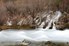 River in Jiuzhaigou Royalty Free Stock Photography