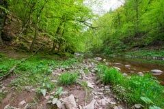 River Jizera Royalty Free Stock Photos
