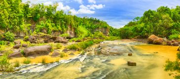 River in jungle royalty free stock image