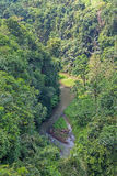 River and jungle in Bali Royalty Free Stock Image