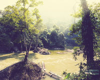 River in jungle Stock Photography